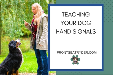 Teaching Your Dog Hand Signals Front Seat Ryder